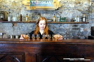 Kilbeggan-Clonmacnoise-031